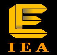 Blockchain+ energy, IEA is born strong
